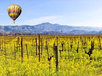 Napa Valley Sip and Soar